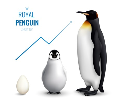 Illustration pour Royal penguins life cycle realistic poster with egg chick adult and indicating growth up arrow vector illustration - image libre de droit