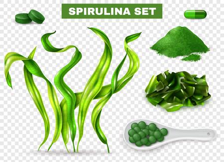 Illustration pour Spirulina realistic set with seaweeds  supplement capsules tablets green powder chopped dried algae transparent background vector illustration - image libre de droit