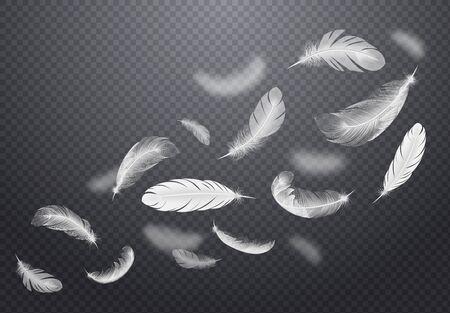 Ilustración de Set of white falling bird feathers on dark transparent background in realistic style vector illustration - Imagen libre de derechos