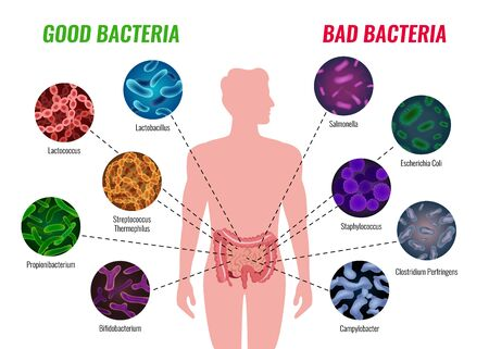 Illustration pour Good and bad bacteria poster with healthcare and treatment symbols flat  vector illustration - image libre de droit