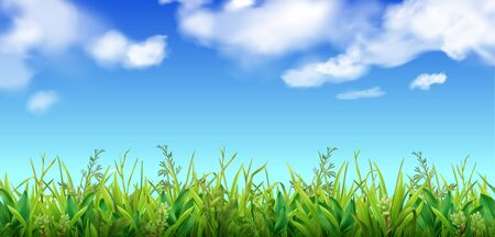 Illustration pour Green grass and blue sky with clouds background realistic vector illustration - image libre de droit