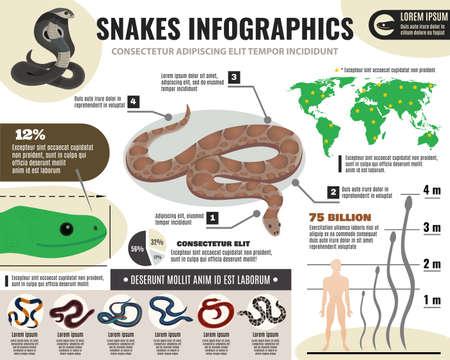 Ilustración de Snakes reptiles infographics with information about royal python and various serpents on light background vector illustration - Imagen libre de derechos