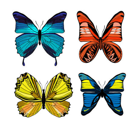Illustration pour Colorful graphic insects set with different kinds of butterflies on white - image libre de droit