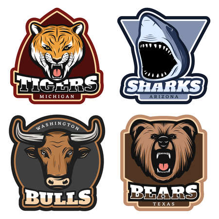 Illustration for Colorful wild animals labels set with tiger shark bull and bear heads in vintage style isolated vector illustration - Royalty Free Image
