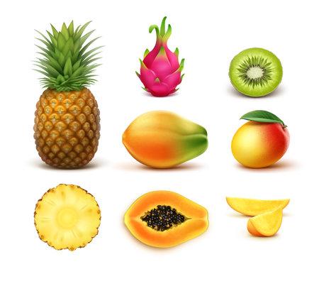 Illustration pour Vector set of whole and half cut tropical fruits pineapple, kiwi, mango, papaya, dragonfruit isolated on white background - image libre de droit
