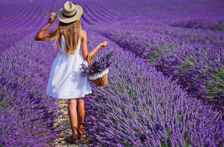 Back view of beautiful young girl in hat with basket in the lavander fields in Valensole. Provence, France.
