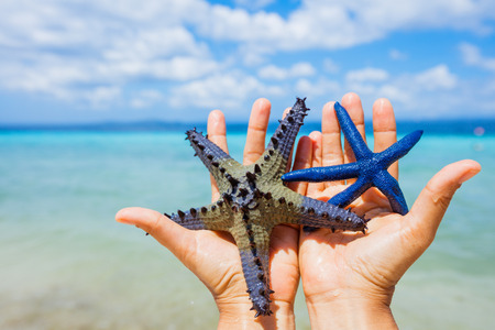 Two beautiful colorful starfish in girl hands in blue bright summer water.