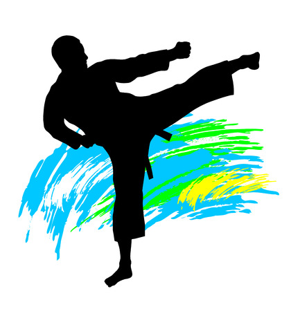 Illustration  karate silhouette with elements