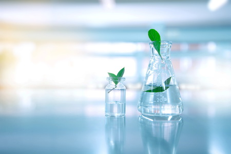 Foto de clear water in glass flask and vial with natural green leave in blue biotechnology science laboratory background - Imagen libre de derechos