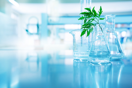 Foto de green leave in biotechnology science research laboratory with flask beaker cylinder and water in blue technology background - Imagen libre de derechos