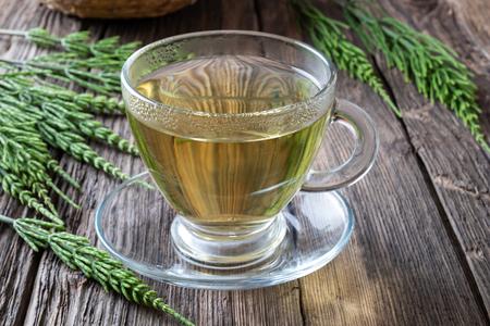 Photo pour A cup of horsetail tea with fresh plant - image libre de droit