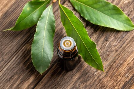 Photo for A dark bottle of essential oil with fresh bay leaves - Royalty Free Image
