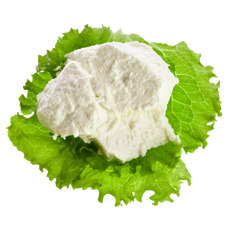 Ricotta Cheese with lettuce leaves isolated on white background