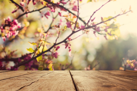 Photo pour Empty wooden vintage table board over spring blossom bokeh background - image libre de droit