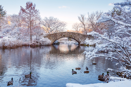 Photo pour Central Park. New York. USA in winter covered with snow. Gapstow bridge. - image libre de droit