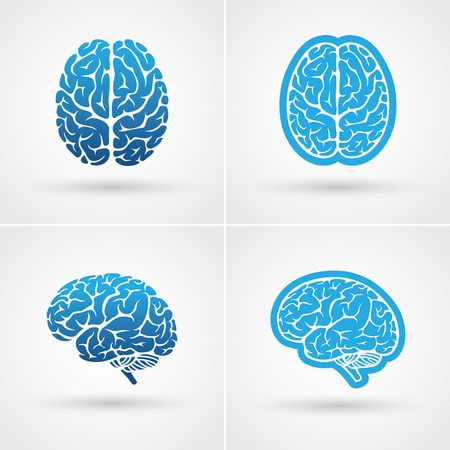 Illustration pour Set of four blue brain icons. Top and side view - image libre de droit
