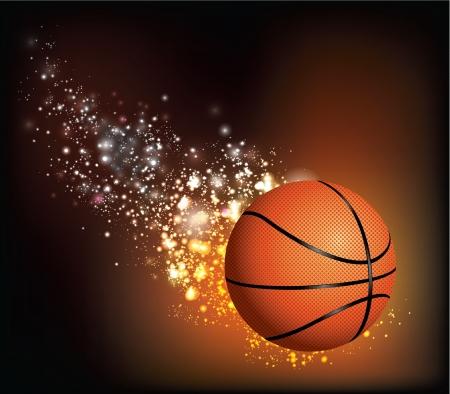 Basket Ball Flies