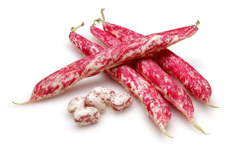 Photo pour Fresh pinto beans isolated on white background - image libre de droit