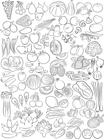 Photo for Vector illustration of fruits and vegetables in line art mode - Royalty Free Image
