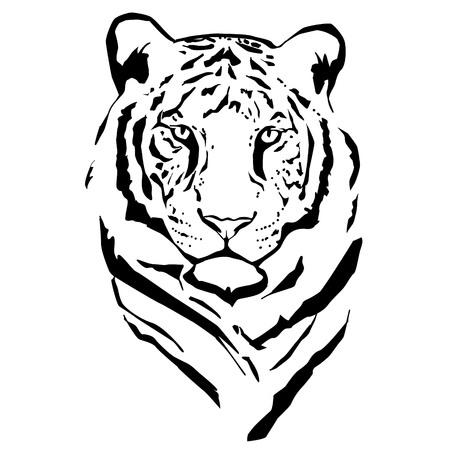 Illustration pour Vector silhouette of tiger on white background. - image libre de droit