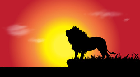 Illustration for Vector silhouette of lion in nature at sunset. - Royalty Free Image