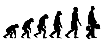 Illustration pour Painted theory of evolution of woman. Vector silhouette of homo sapiens. Symbol from monkey to shopping. - image libre de droit