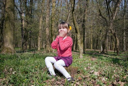 Foto per Little girl in the forest sitting on a stump - Immagine Royalty Free