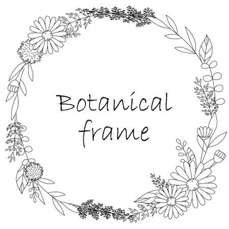 Illustration pour Botanical frame illustration. Invitation or greeting card templates (white background, vector, cut out) - image libre de droit