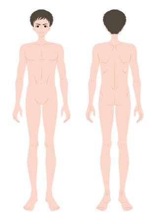 Illustration pour Male body - image libre de droit