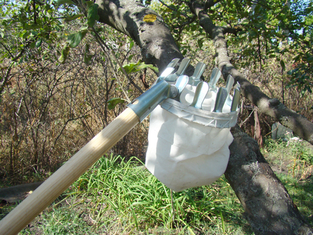 devices for gathering fruit from high trees