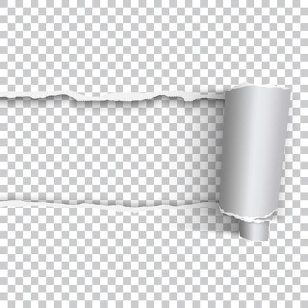 Illustration pour Vector realistic torn paper with rolled edge on transparent background - image libre de droit