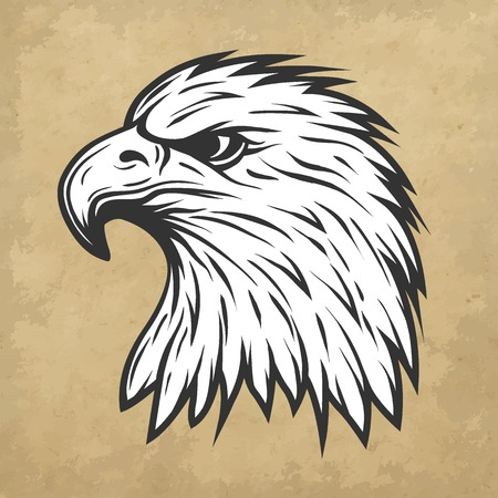 Illustration for Proud eagle head in profile.  Line art style. Vector illustration. - Royalty Free Image