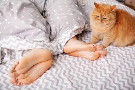 Photo pour Legs of lovers under blanket. Happy couple having fun in bed - image libre de droit