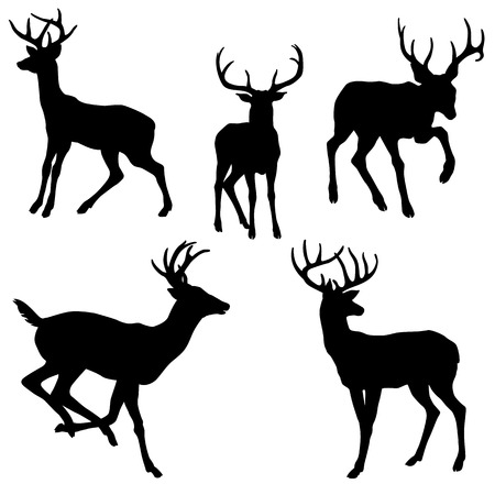 Illustration for adult male deer silhouette black illustration set - Royalty Free Image