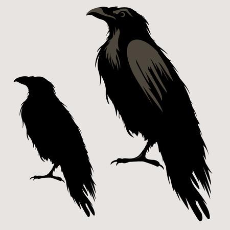 Illustration pour black raven bird silhouette - image libre de droit