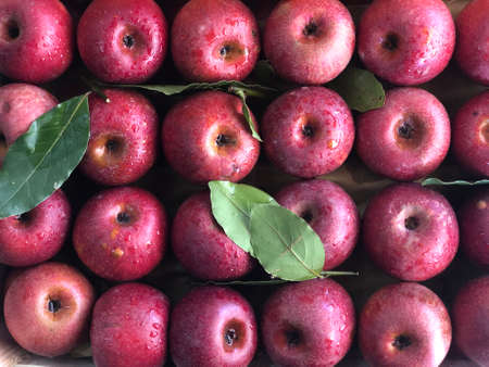 Photo for fresh apple fruit pile in a fruit shop - Royalty Free Image