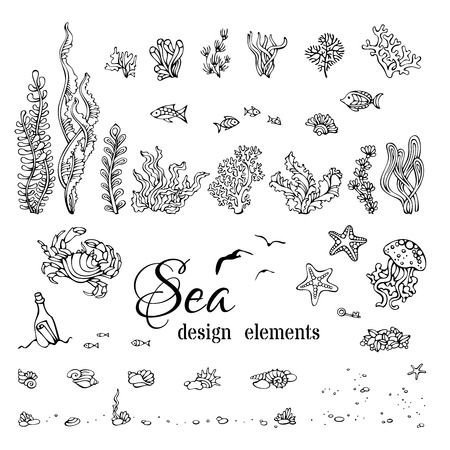 Illustration pour Vector set of underwater marine design elements. Various black contours of shells, algae, fish, jellyfish, starfish, bottle with a letter, key, stones and bubbles isolated on white background. - image libre de droit