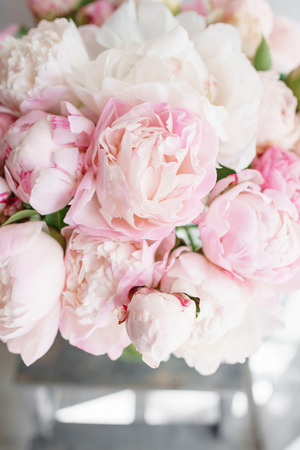 Photo pour Lovely flowers in glass vase. Beautiful bouquet of white and pink peonies . Floral composition, daylight. Summer wallpaper. Pastel colors - image libre de droit