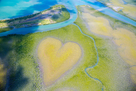 Foto de Heart of Voh, aerial view, formation of mangroves vegetation resembles a heart seen from above, New Caledonia, Micronesia, South Pacific Ocean. Heart of Earth. Earth day. Love life, save environment - Imagen libre de derechos