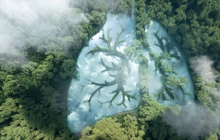 Foto de Green lungs of planet Earth. 3d rendering of a clean lake in a shape of lungs in the middle of  virgin forest. Concept of nature and rainforest protection, nature breathing and natural co2 reduction. - Imagen libre de derechos