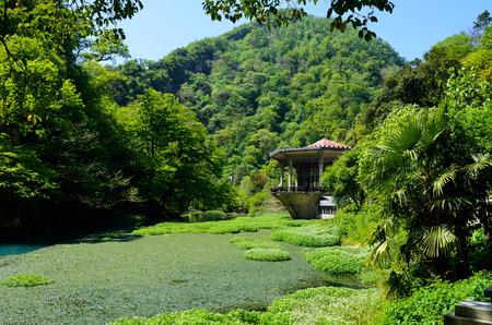 nature, travel, beauty, greenery, lake, naturalness, relaxation