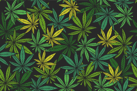 Illustration for Marijuana leaf vector seamless pattern.  Cannabis engraving plant. - Royalty Free Image