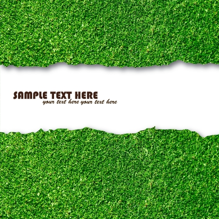 Blank white paper on green grass for text