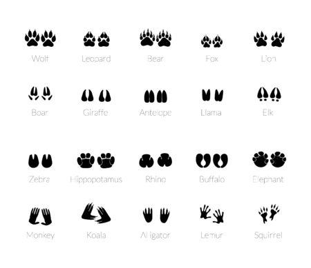 Illustration pour Animals footprints, paw prints. Set of different animals and predators footprints and traces. Cat, lion, leopard, tiger, fox, wolf, dog, bear. Vector - image libre de droit