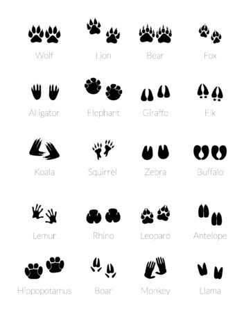 Photo pour Footprints of animals. Silhouette of animal legs. Wildlife paw trail or trail footprint. - image libre de droit