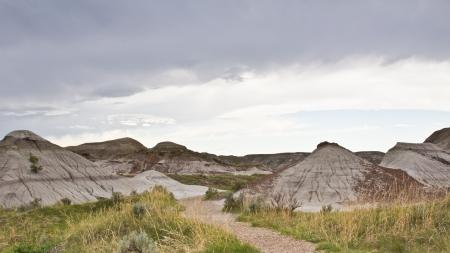 The badlands landscape, Dinosaur National Park, Alberta, Canada