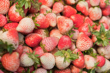 Fresh ripe strawberries.の写真素材