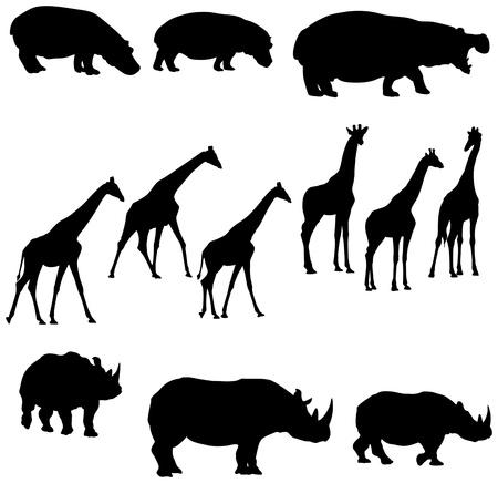 Ilustración de cool silohuettes of hippo giraffe and rhino  - Imagen libre de derechos