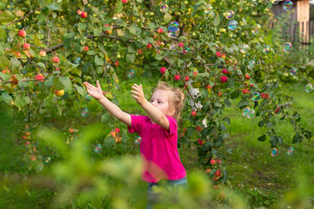 Photo for Portrait of children in apple orchard. Little girl in pink Tshirt, stands near branches of an apple tree, catching soap bubbles with her hands. Carefree childhood, happy child - Royalty Free Image