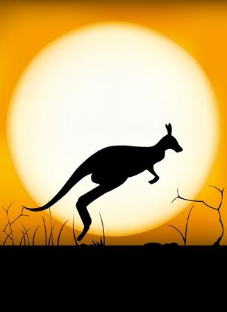 Vektor für Kangaroo sunset - Lizenzfreies Bild